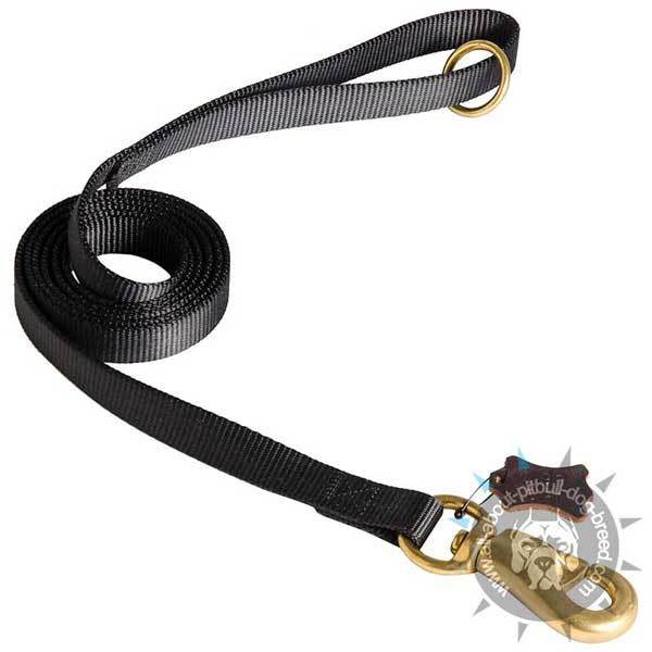 Nylon Dog Leash for Walking