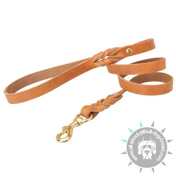 Braided leather dog leash for daily walking