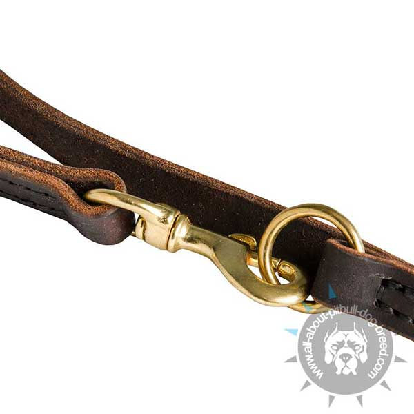 Strong Snap Hook and O-Ring on Leather Pitbull Leash