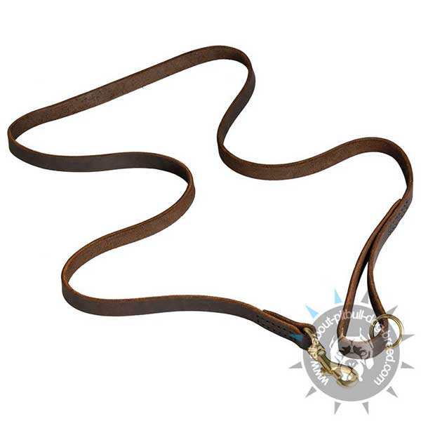 Leather Dog Leash for Management of Pit Bull
