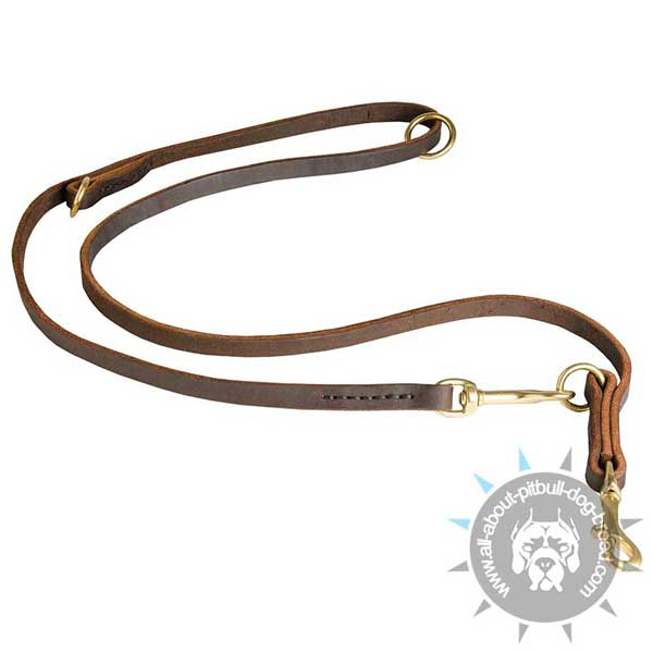 Field Leather Dog Leash for Pitbull
