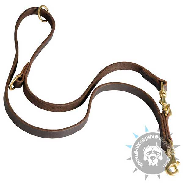 Functional Pitbull Leash Leather Perfectly Oiled