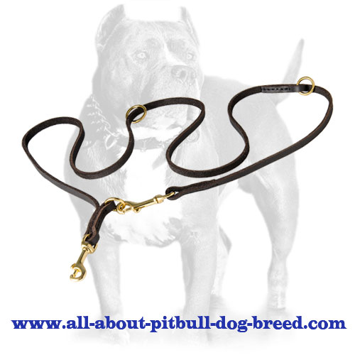 Soft English Leather Pitbull Leash