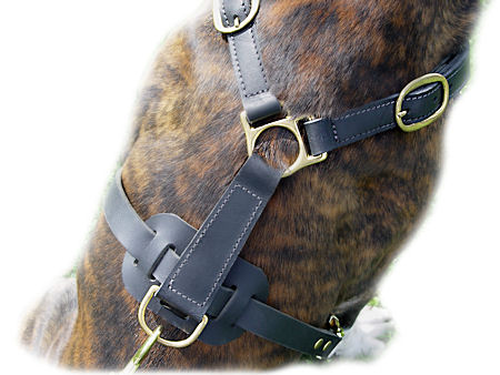 Leather No Choke Dog Harness for Pitbull