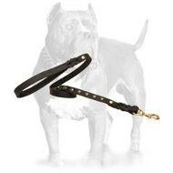 Uniquely Studded Leather Dog Leash for Walking and Tracking