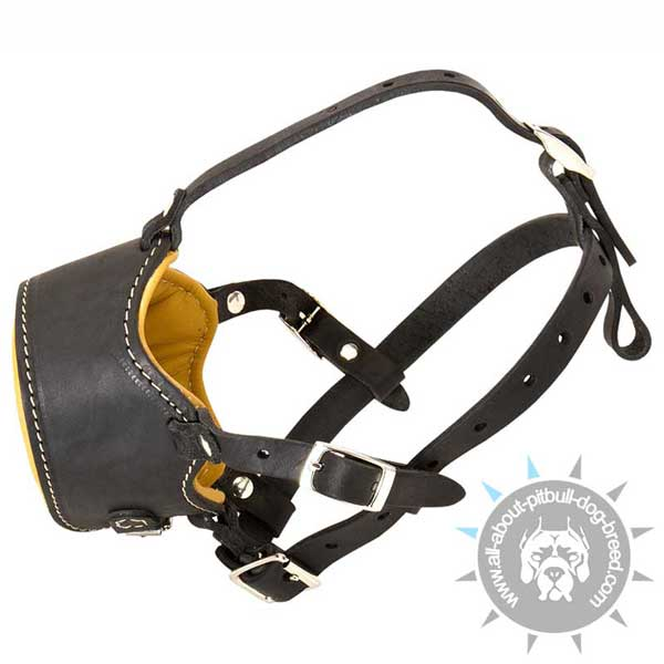 Leather safety dog muzzle