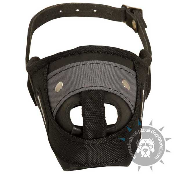 Reliably Stitched Pitbull Muzzle of Leather and Nylon