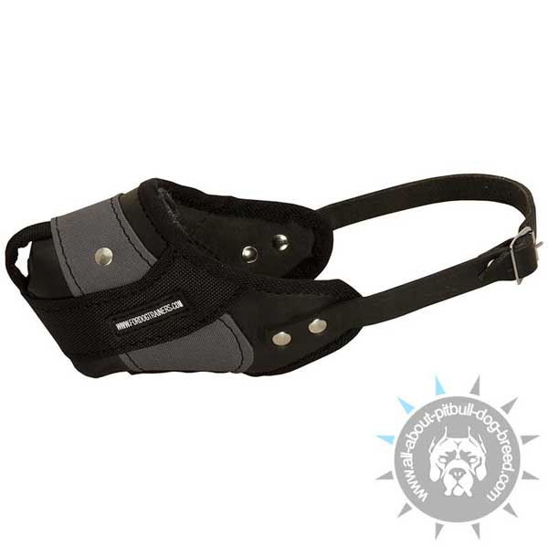 Combined Leather and Nylon Pitbull Muzzle for Dog Training