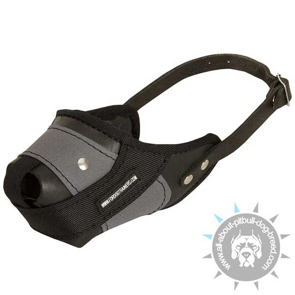 Adjustable Pitbull Muzzle Made of Combination of Leather and Nylon