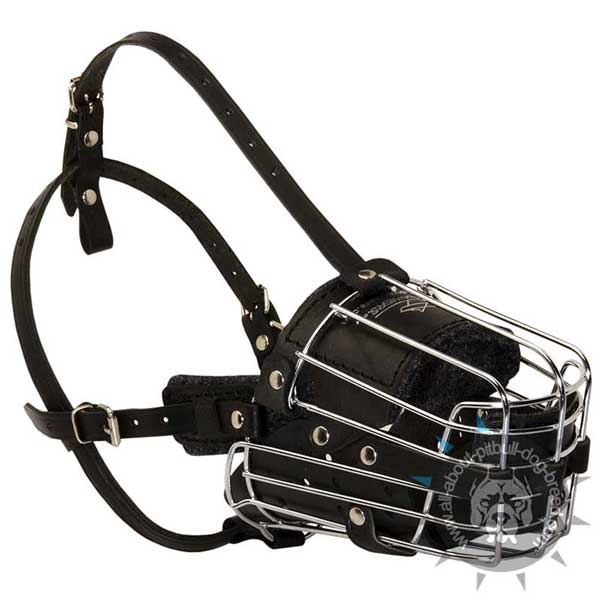 Wire Basket Pitbull Muzzle with Several Adjustable Straps