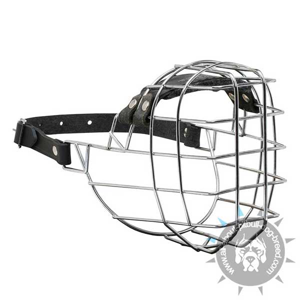 Pitbull Wire Basket Muzzle for Walking
