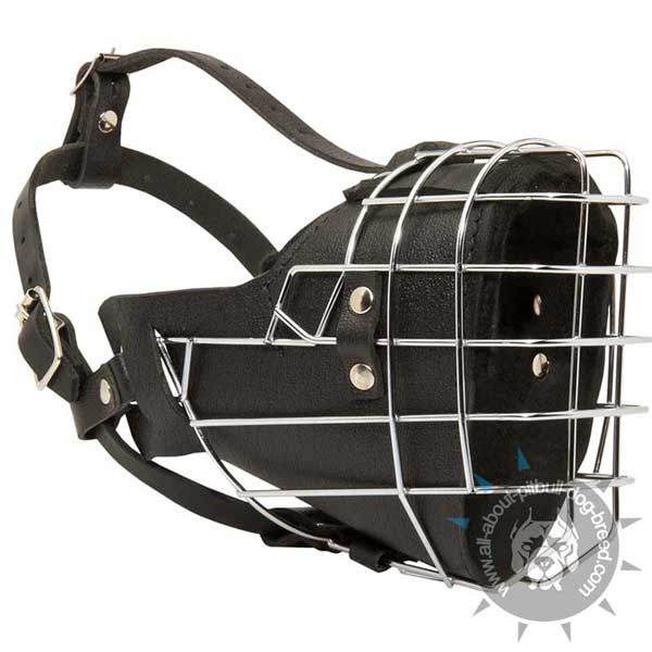 Pitbull metal cage muzzle for hard training