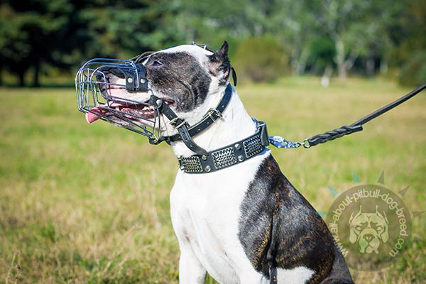 Easy to breathe metal basket muzzle