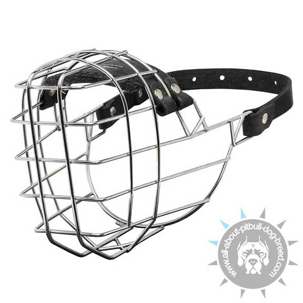 Wire basket dog muzzle for Pit Bull