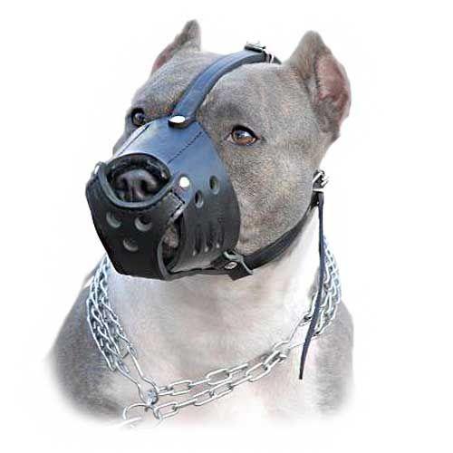 Easy Walk Leather Dog Muzzle