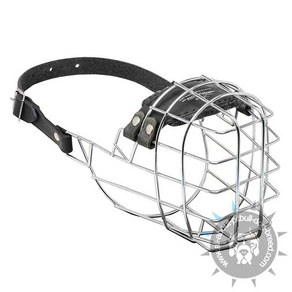 Wire dog muzzle with padded nose area