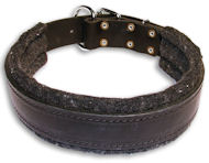 PITBULL Padded Black collar 23'' /23 inch dog collar - C24