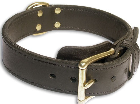 Double Layer Collar 1 3/4 inch for Pitbull