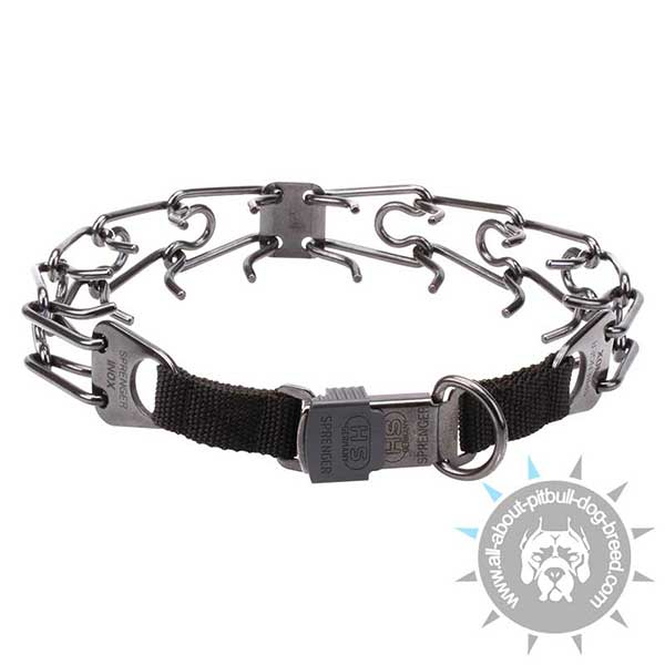 Obedience Training Black Pinch Collar