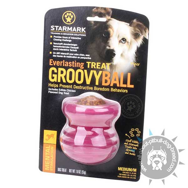 Pitbull Rubber Challenging Toy