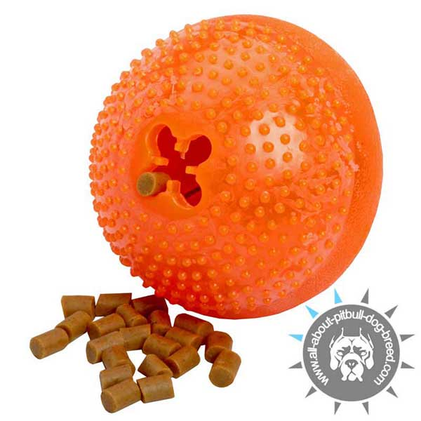 Dog Chew Toy for Treat Dispensing