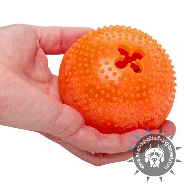 Treat Dog Toy for Delicious Mealtime