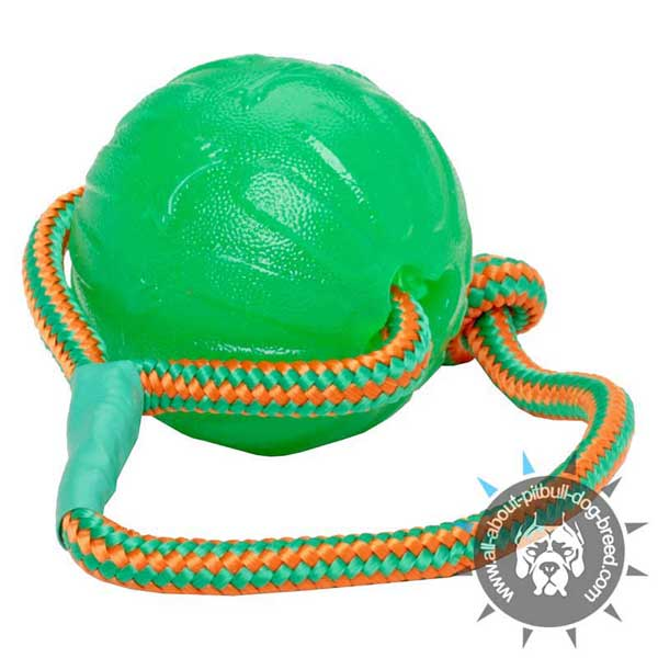 Chew Dog Ball on Rope