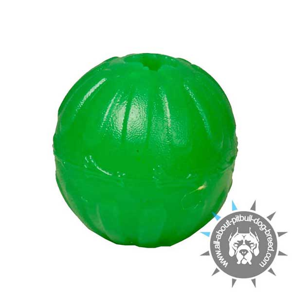 Indestructible Rubber Treat Dispensing Ball