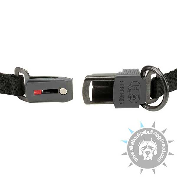 Pitbull Curogan Pinch Collar with Secure Closure