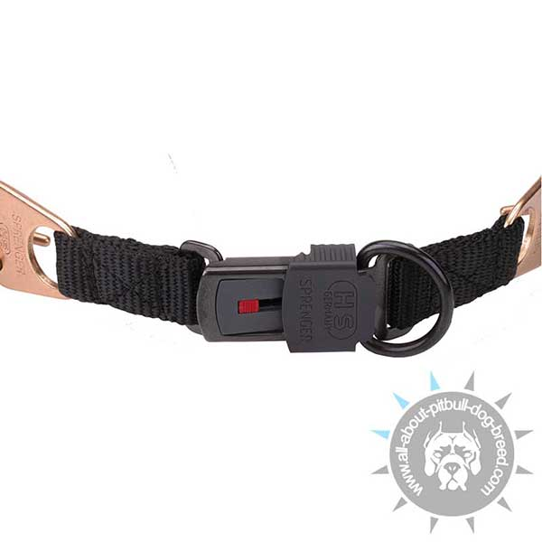 Pitbull Curogan Collar with Strong Click Lock System