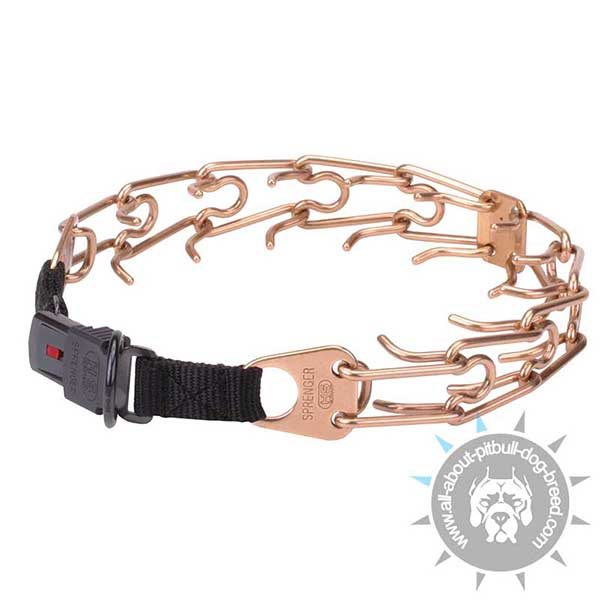 Pitbull Training Pinch Collar