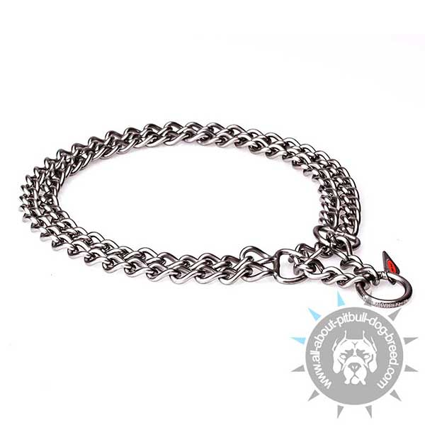 Training Pitbull  Collar Double Chain
