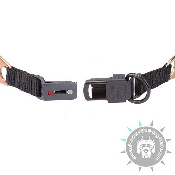 Pitbull Curogan  Pinch Collar with Secure Fixation