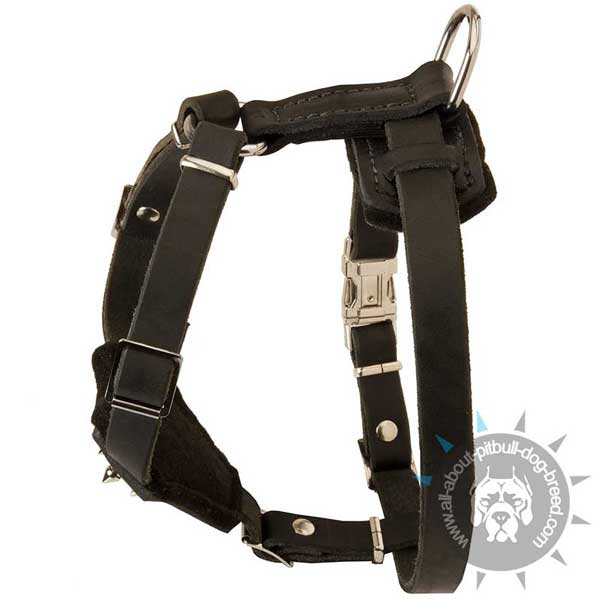 Pitbull Leather Harness for Pitbull Puppy