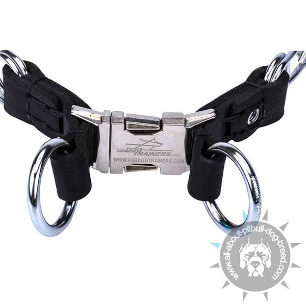Pitbull  Pinch Collar with Quick Release Buckle