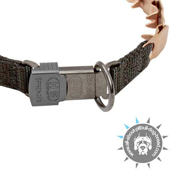 Click Lock Buckle on Pitbull Neck Tech Collar