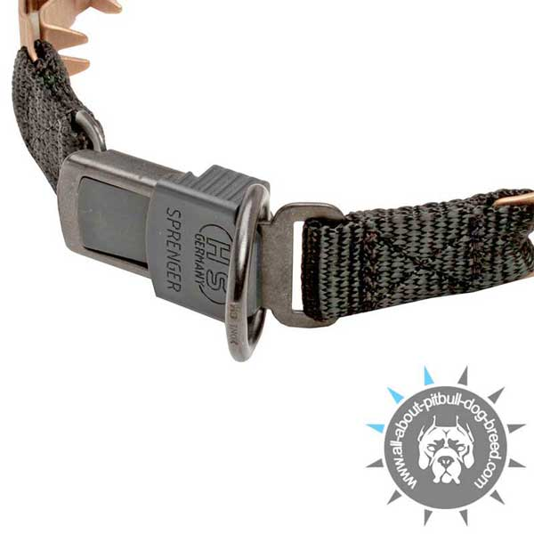 Neck Tech Collar with Click Lock Buckle