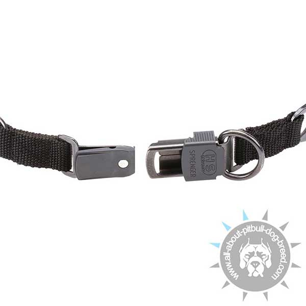Pitbull HS Pinch Collar with Reliable Buckle