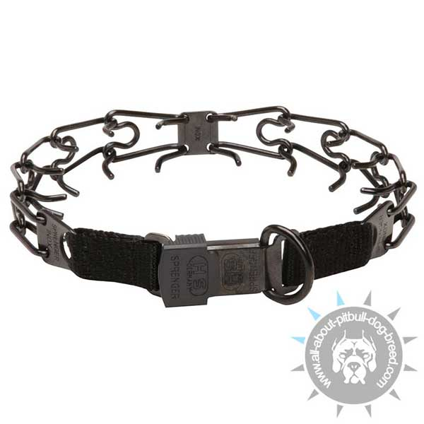 Pitbull pinch Collar for Dog Control
