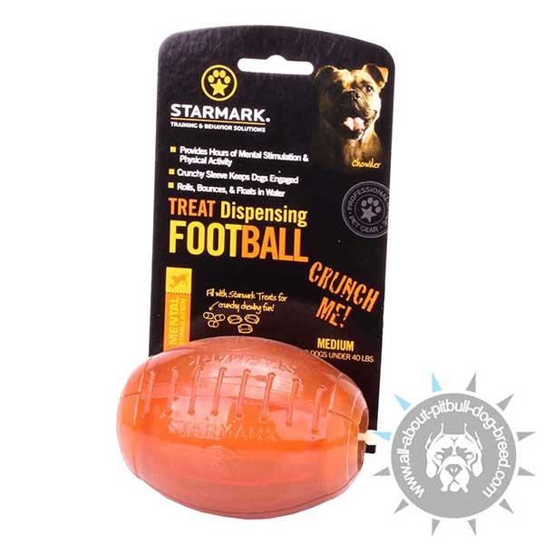 Rugby Ball Treat Holder for Prolonged Meal Time