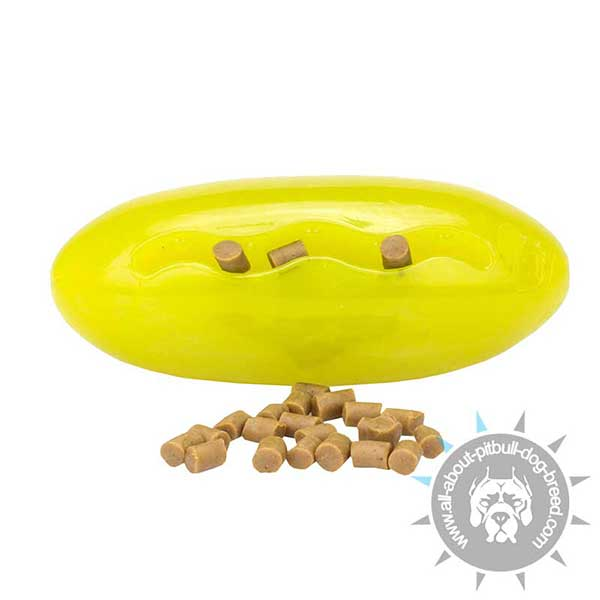 Melon-shaped Pitbull Treat Holder