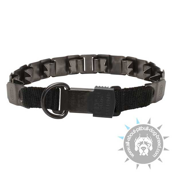 Pitbull Training Sport Collar of Black Steel