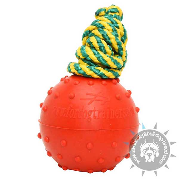 Durable Rubber Water Ball on String