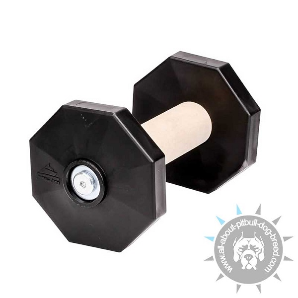 Top Grade Dog Dumbbell with plastic Plates