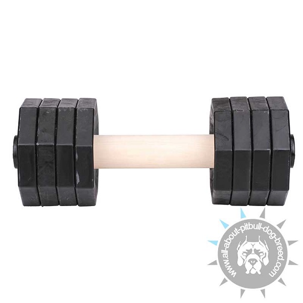 Wooden Dog Dumbbell for Professional Use
