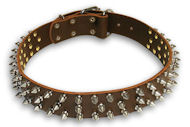 Leather Brown collar 25'' for PITBULL /25 inch dog collar - S44