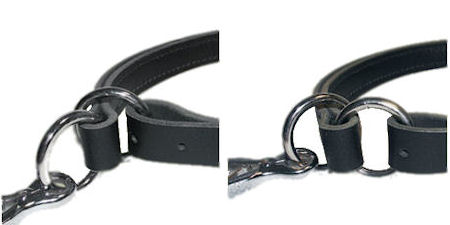 Strong 2 O-rings on Pitbull Leather Choke Collar