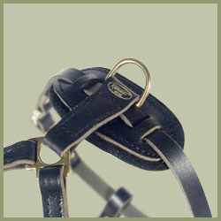 Tac-Black Leather Padded Tracking Harness for Pitbull