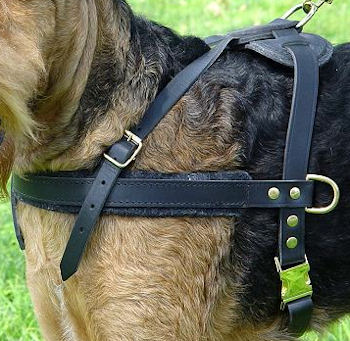 tracking-pulling-dog-harness