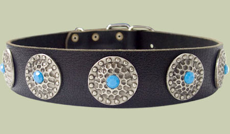 High Quality Dog Collars with blue stones Pitbull
